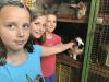 Naravoslovni tabor Peca - Na obisku